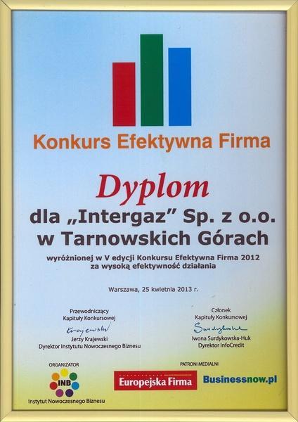 Efektywna Firma 2012 - Dyplom